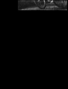 PDF vannature_okt1997_atb-fiets_vergunning